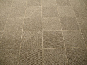 Patterned ThermalDry Carpet