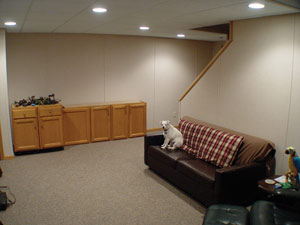 Amazing Flooring Comes In Many Options   Find The Best One For Your Basement.